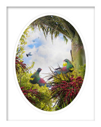 '' Birds of a Feather'' woodpigeon framed art paper print