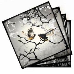 Monochrome NZ birds ceramic art tile coasters