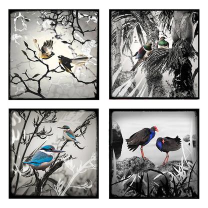 Monochrome NZ birds ceramic art tile coasters