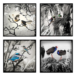 Monochrome NZ birds ceramic wall art tiles
