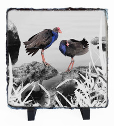 Pukeko rock slate wall art tile
