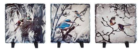 Set of 3 NZ bird rock slate wall art tiles