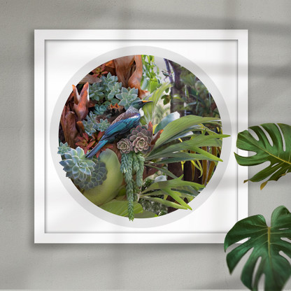 Tui, succulents and staghorn framed circular art print