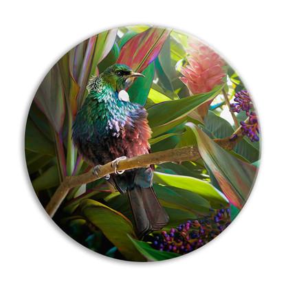''Hidden Jewel'' NZ Tui circular ceramic wall art tile 20cm diameter