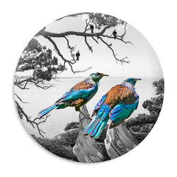 'Tui Vista' circular ceramic wall art tile 20cm diameter