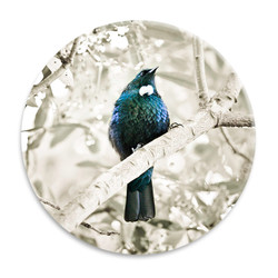 ''Tui Song A'' NZ landscape circular ceramic wall art tile 20cm diameter