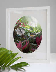 'LOST IN PARADISE' - 28X36CM unframed tropical NZ bird oval photo wall  art printNT