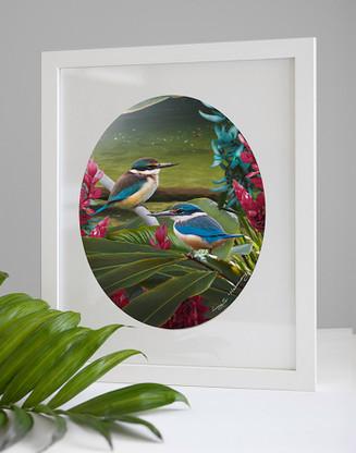 Harmony NZ Kingfisher art print