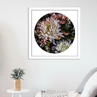 ''Chrysanthemum 1'' - PAPER PRINT / CANVAS / FRAMED ART