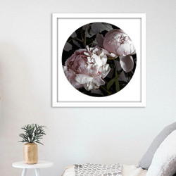 ''Peony 1'' - PAPER PRINT / CANVAS / FRAMED ART