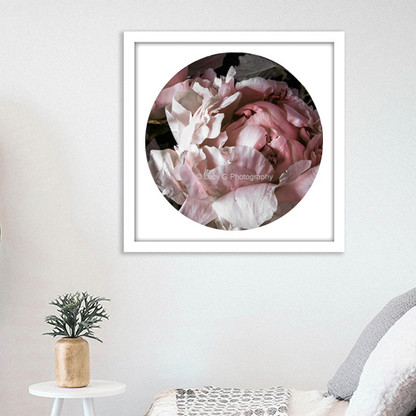 ''Peony 2'' - PAPER PRINT / CANVAS / FRAMED ART