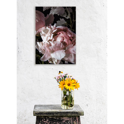 Pink peony stretched wall art photo canvas