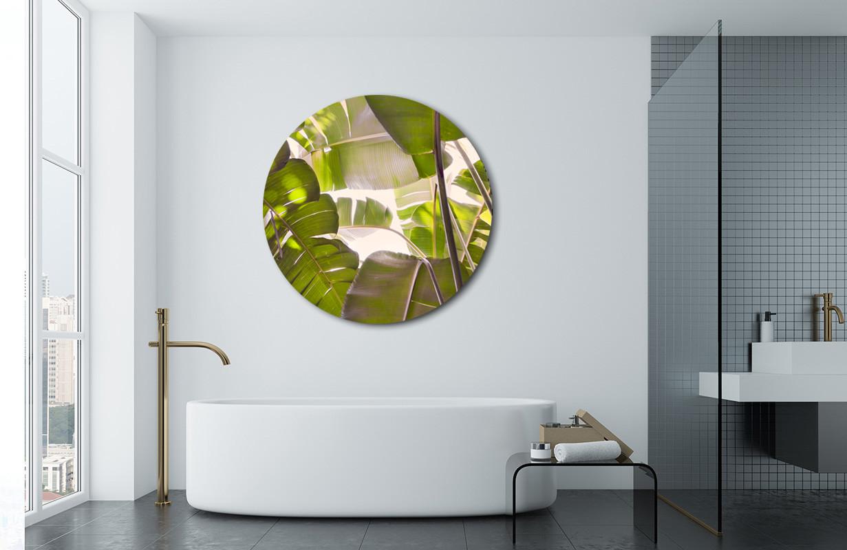 A New Beginning 500 To 1200mm Dia Aluminium Or Glass Circular Bathroom Outdoor Art Creative Nz Photography Art By Lucy G