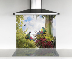 900x750mm DIY glass splashback with 2 NZ Wood Pigeons on Nikau