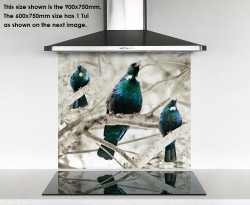 **SPECIAL** 'Tui Song'  DIY printed glass splashback or glass wall art - 600mm /900mm /1500mm wide