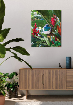 600x750mm glass wall art with Wood Pigeon in tropical garden