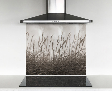 900x750mm DIY glass splashback sepia Toi Toi