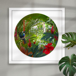 Contemplation ll - NZ Tui -round / circular  New Zealand art print framed.