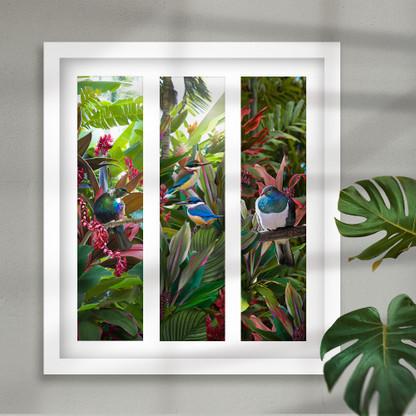 NZ Tui, Kingfisher and Kereru - tropical framed artwork