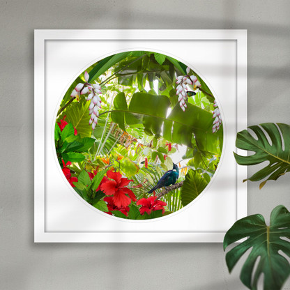 Tui and Hibiscus - circular framed NZ wall art print