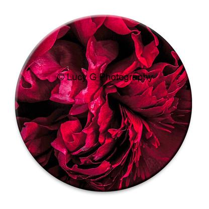 Scarlet Red Peony circular wall art tile.