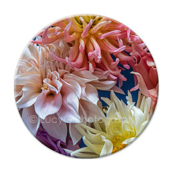 Dahlia circular wall art tile 2