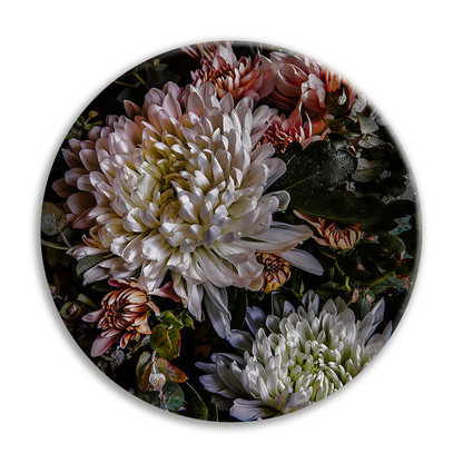 Chrysanthemum 1 - circular ceramic wall art tile