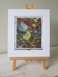 **FB SPECIAL** Enchanted Garden - 4 AVAILABLE ONLY AT THIS PRICE