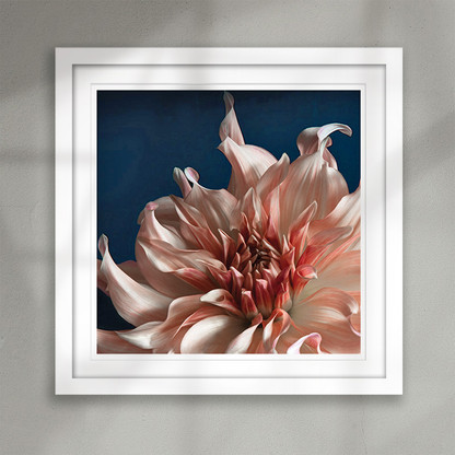 """Inspire'' beautiful pale peach flower art print"