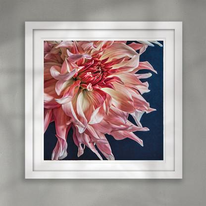 ''Divine'' beautiful closeup flower art print