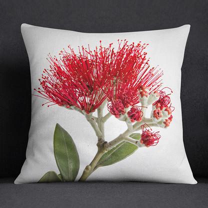 Pohutukawa flower NZ art cushion