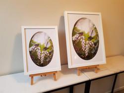 ''Soulmates'' fantail oval print framed - smaller size 28x38cm frame size