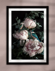 NZ Kingfisher bird and pink Peony flower artwork framed