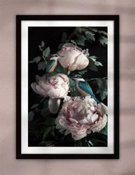 NZ Kingfisher bird and pink Peony flower artwork framed