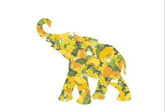 WALLPAPER WILDLIFE BABY ELEPHANT by Inke Heiland wm-babyelephant-0167