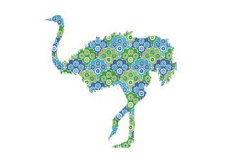 WALLPAPER WILDLIFE OSTRICH by Inke Heiland wm-ostrich-0036