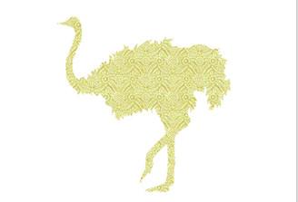 WALLPAPER WILDLIFE OSTRICH by Inke Heiland wm-ostrich-004