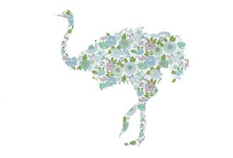 WALLPAPER WILDLIFE OSTRICH by Inke Heiland wm-ostrich-0050