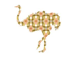 WALLPAPER WILDLIFE OSTRICH by Inke Heiland wm-ostrich-0063