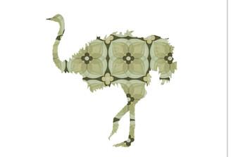 WALLPAPER WILDLIFE OSTRICH by Inke Heiland wm-ostrich-0076