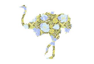 WALLPAPER WILDLIFE OSTRICH by Inke Heiland wm-ostrich-0149