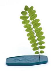Ceramic Plan Vase Turquoise by Sebastien Cordoleani for Moustache