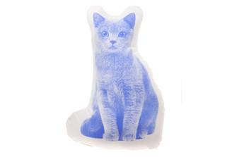 SALVOR FAUNA SHORTHAIR CAT MINI CUSHION/PILLOW design by Ross Menuez