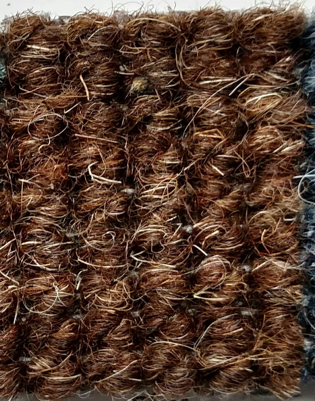 Imported German Wool Square Weave Carpet 65 Quot 503 Brown