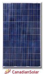 Canadian Solar 240W Poly Module
