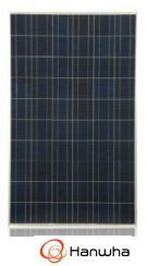 Hanwha SolarOne 240K Poly Module 240W
