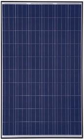 Canadian Solar 310W Poly Module