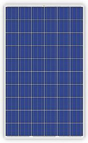 Trina Solar PD05 255W Module