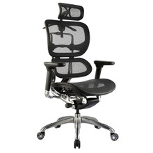 Ergo1 Office Chair