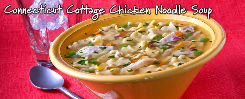 Connecticut Cottage Chicken Noodle Soup